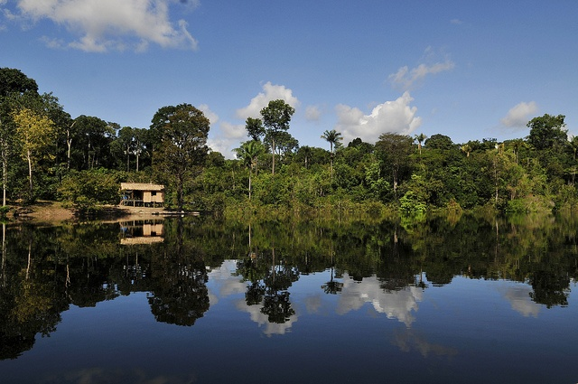 The Amazon, South America