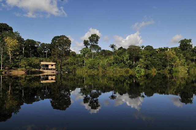 The Amazon, South America