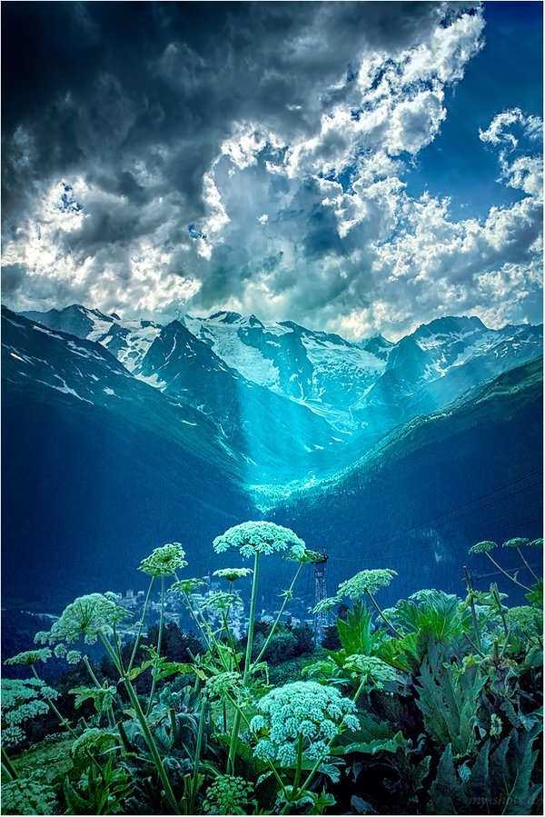 The sunlight on the surroundings gives a look of underwater. Dombay, Karachay-Cherkess Republic - Russia