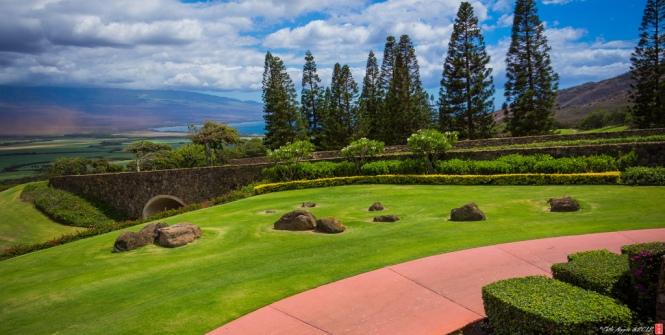 Hawaiian Zen Garden