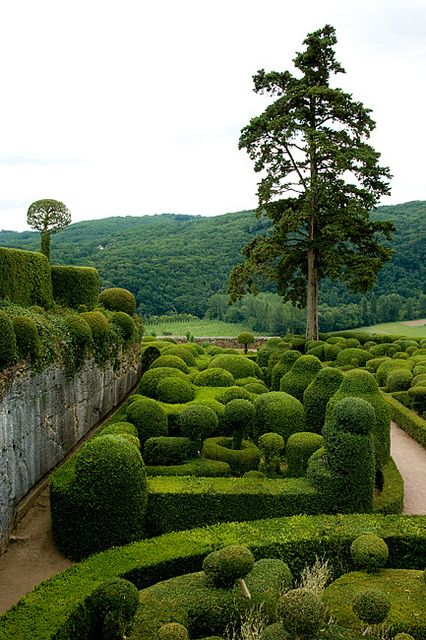 formal hedge garden