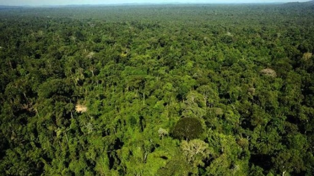 Amazon - Trairao, western Para state in northern Brazil