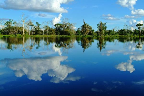 Amazon - Brazil