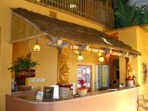 Tiki Huts & Bars