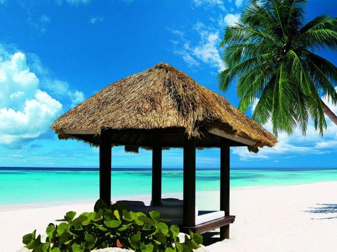 Exotic Beach, Dominican Republic, Hispaniola