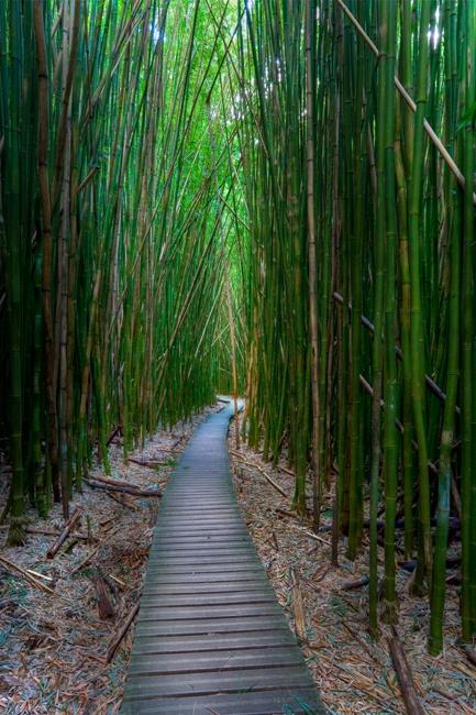 Hawaii, Maui,