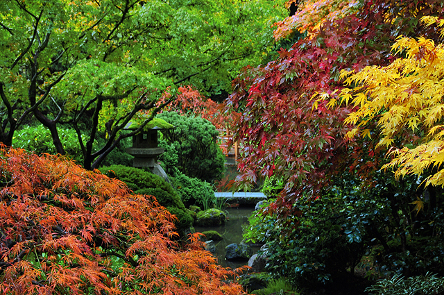 "Portland Japanese Garden has offered a personal encounter with Japanese culture and a tranquil experience that celebrates the natural beauty of Oregon for more than 45 years. The stewards of this cultural treasure continue today to strive for the same standard of perfection sought by garden designers in Japan for more than 1500 years. Nobuo Matsunaga, the Japanese Ambassador to the United States, proclaimed the Portland Japanese Garden to be ""the most beautiful and authentic Japanese garden in the world outside Japan"