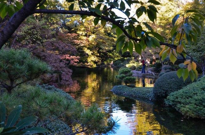 Fort Worth Botanic Garden - Japanese Garden