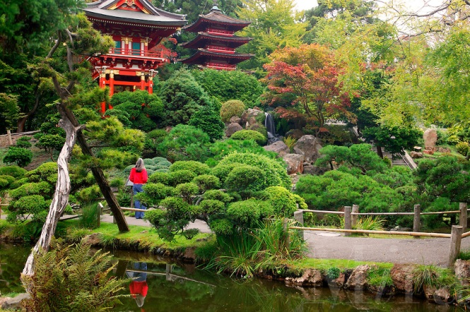 Japanese and botanic gardens amazing nature - Japanese tea garden san francisco ...
