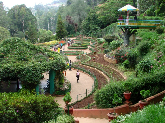 The Government Botanical Garden is a botanical garden in Udhagamandalam (Ooty), Tamil Nadu state, India laid out in 1848. The Gardens, divided into several sections, cover an area of around 22 hectares, and lie on the lower slopes of Doddabetta peak. The garden has a terraced layout. It is maintained by the Tamil Nadu Horticulture Department.