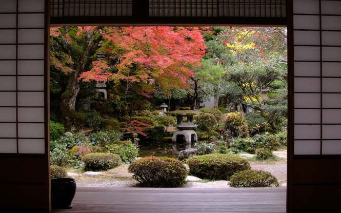 Japanese Garden In Autumn - Traditional Japanese house and garden