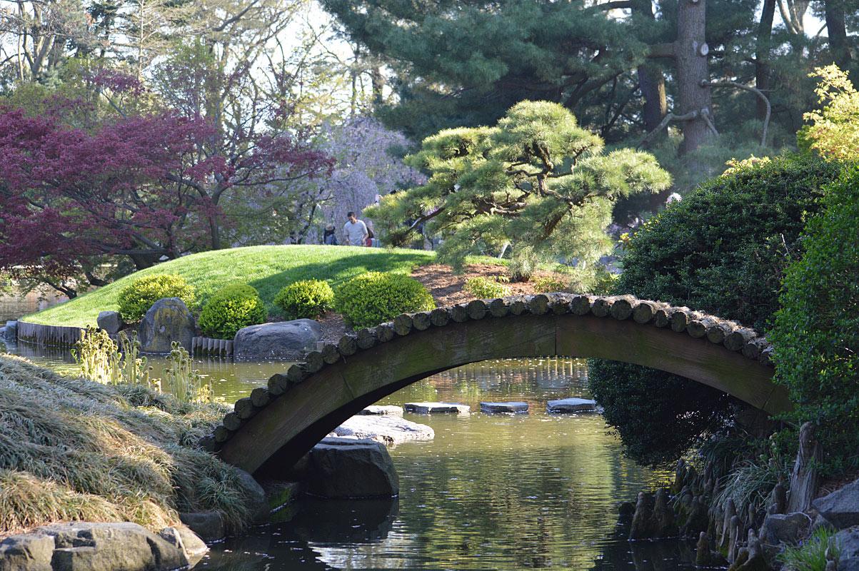 japanese and botanic gardens u2013 amazing nature