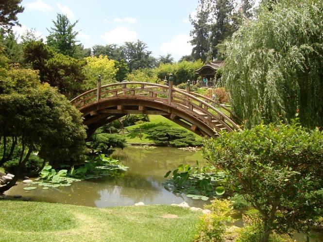 Japanese Garden - London, England