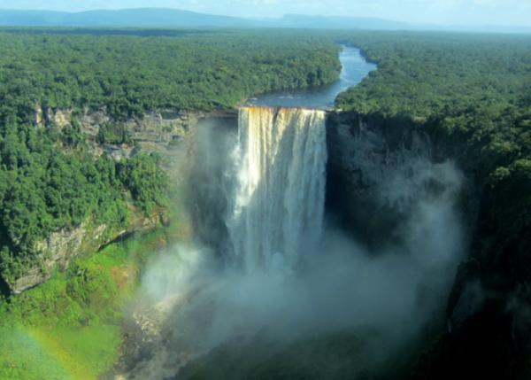 Kaieteur falls-Guyana Wildlife
