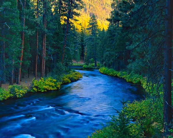 Metolius River Resort Camp Sherman Oregon Perfect