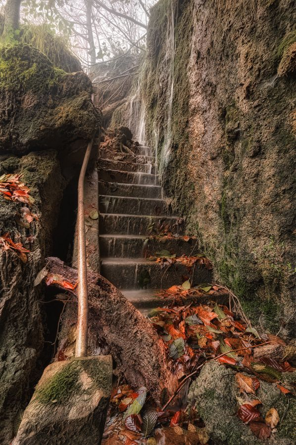 """Forgotten stairs"" by Ivan Prebeg,"