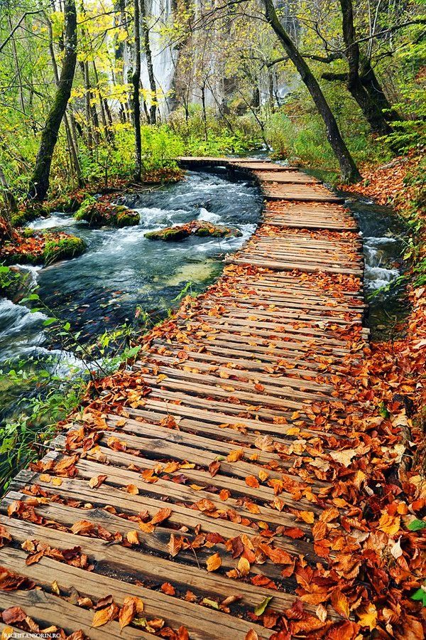 Autumn in Plitvice Lakes