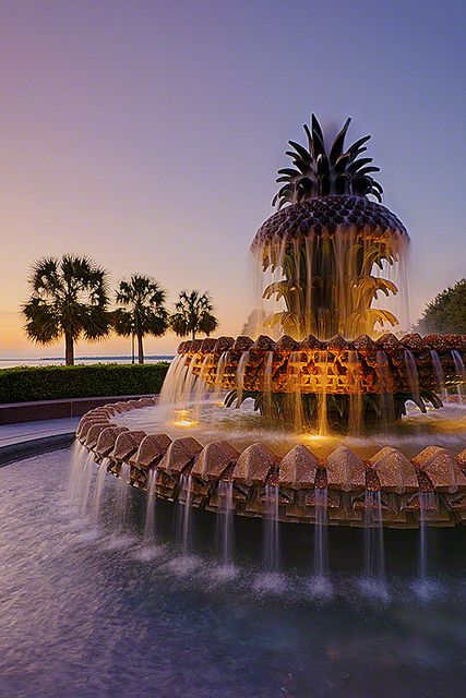 Charleston's Pineapple Fountain at Dawn