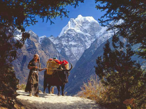 Mt. Everest Region, Nepal