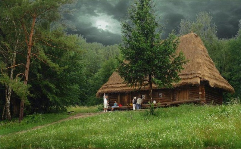 7 Amazing Houses Built Into Nature: 10 Most Beautiful Forest Houses