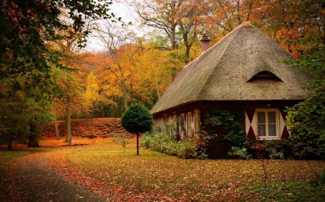 House in natures9