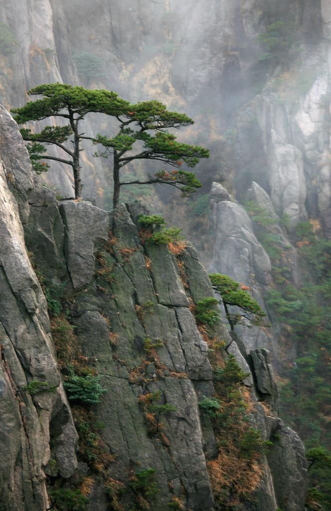 Landschaften - Huangshan