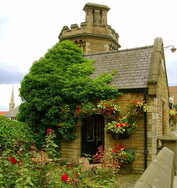 Tea and Scone Shop, Yorkshire, England