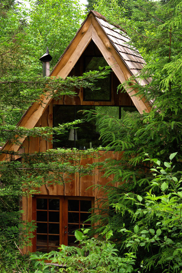 japanese-forest-house